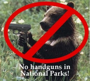 Bear Handgun Guns In Parks