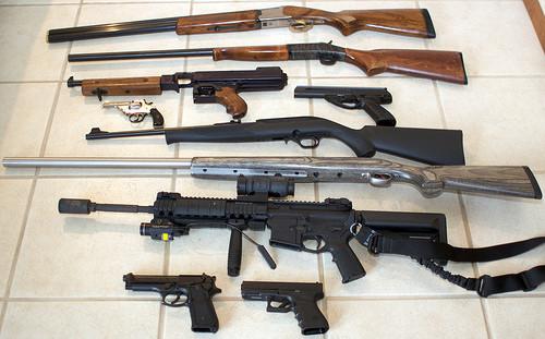 gun control laws
